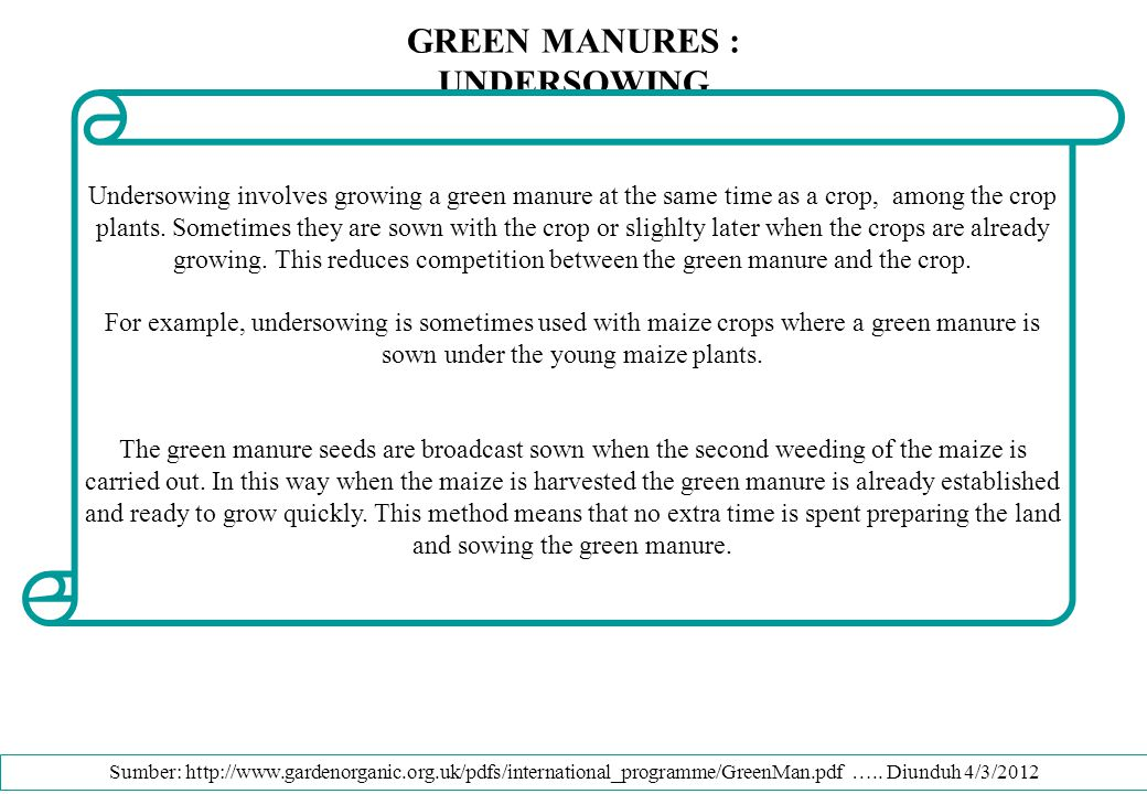 GREEN MANURES : UNDERSOWING