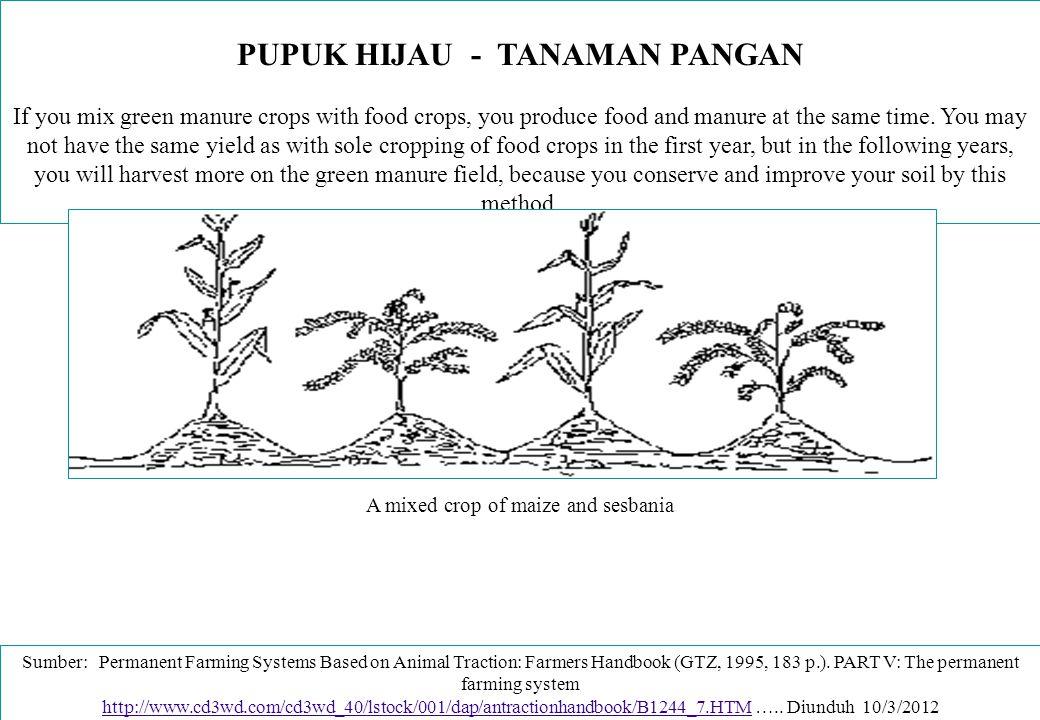 PUPUK HIJAU - TANAMAN PANGAN