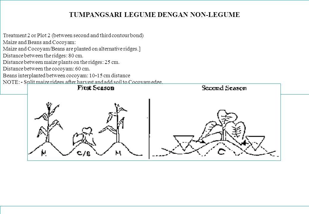 TUMPANGSARI LEGUME DENGAN NON-LEGUME