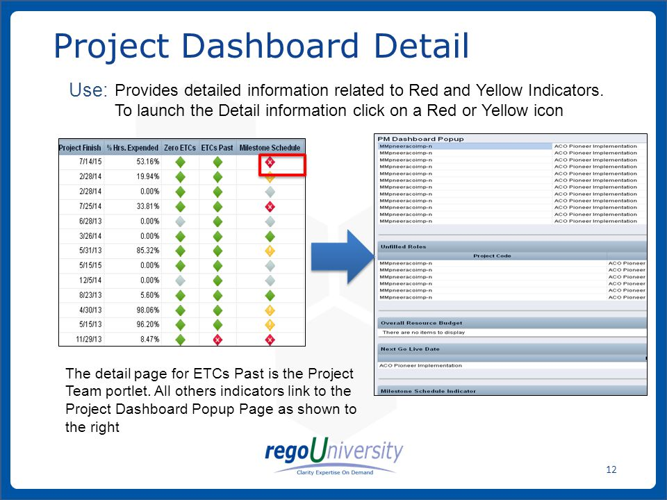 Project Dashboard Detail