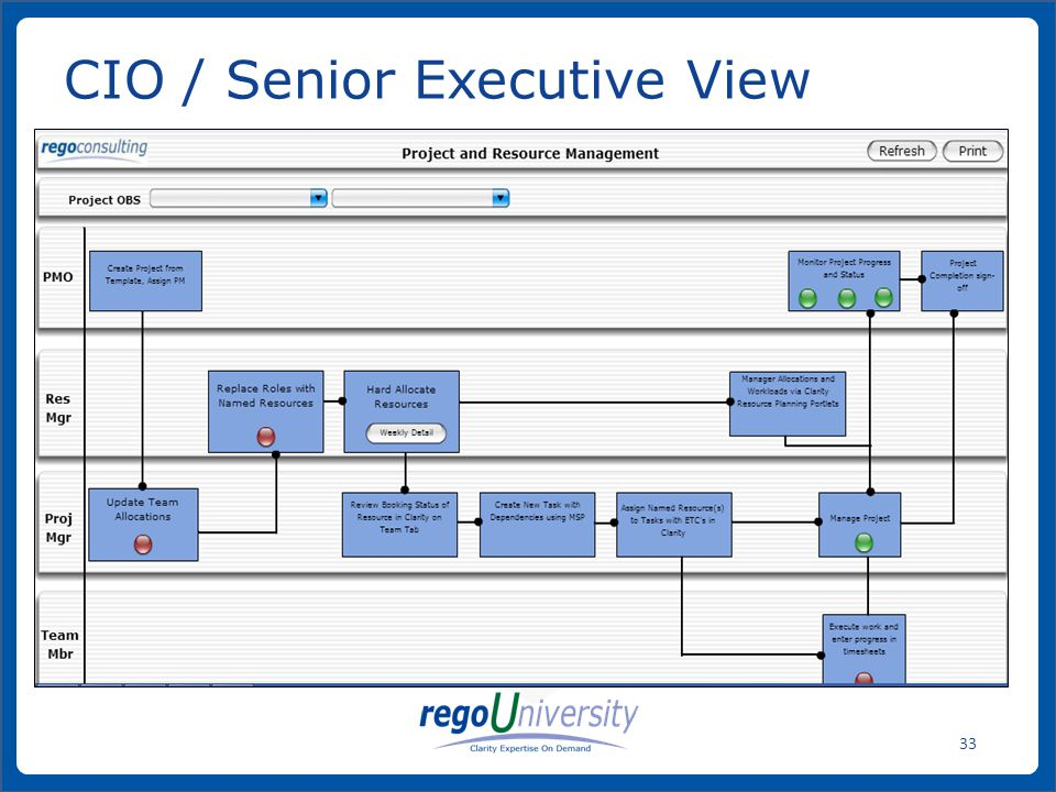 CIO / Senior Executive View