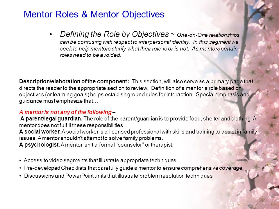 Mentor Roles & Mentor Objectives