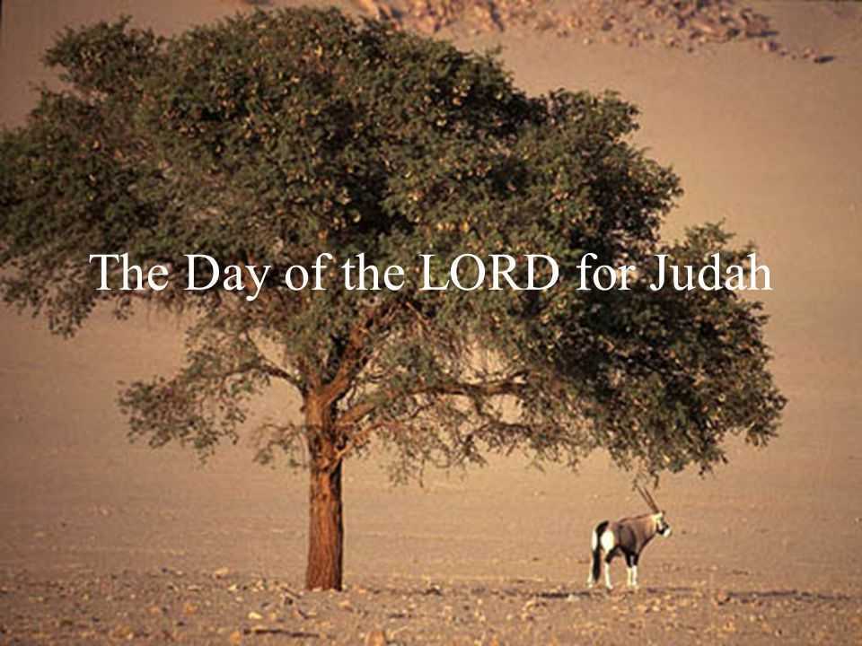 The Day of the LORD for Judah