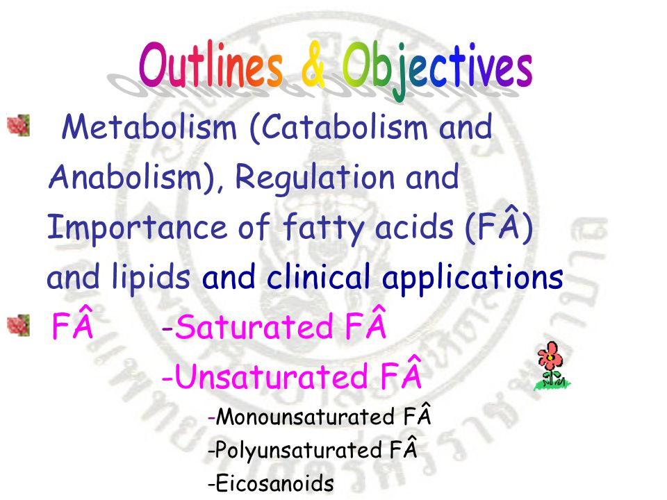 Metabolism (Catabolism and Anabolism), Regulation and