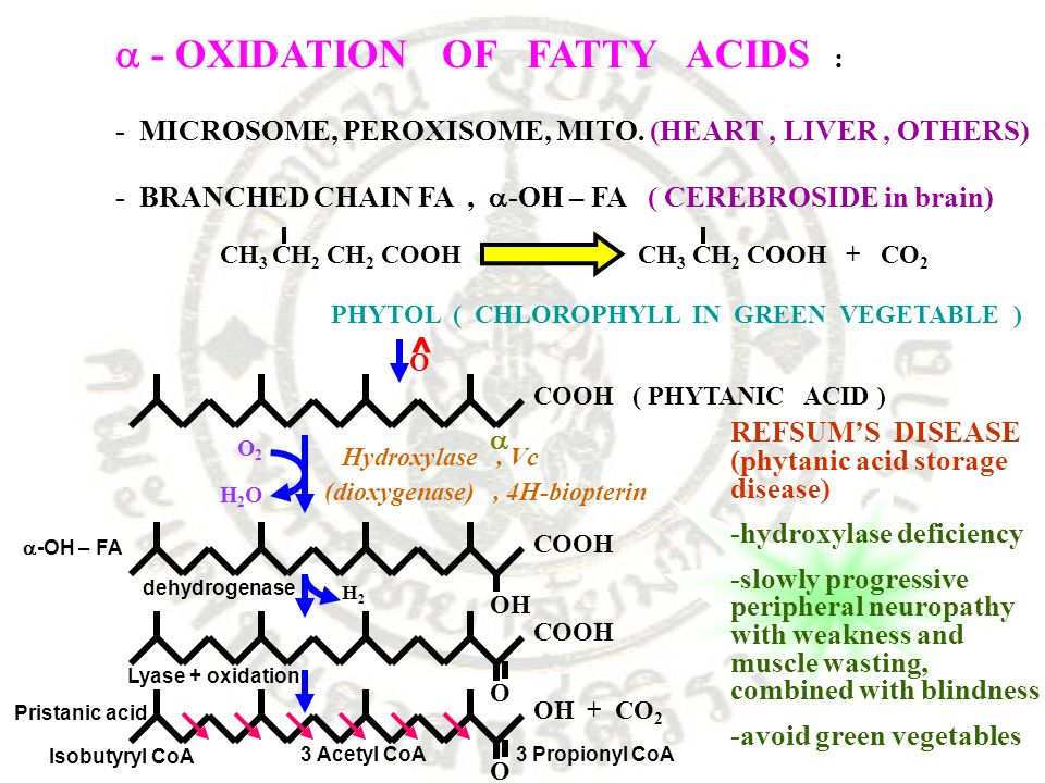  - OXIDATION OF FATTY ACIDS :