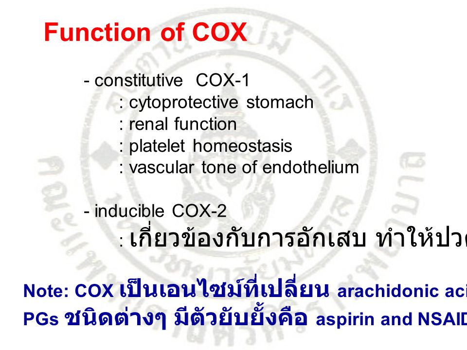 Function of COX - constitutive COX-1 : cytoprotective stomach