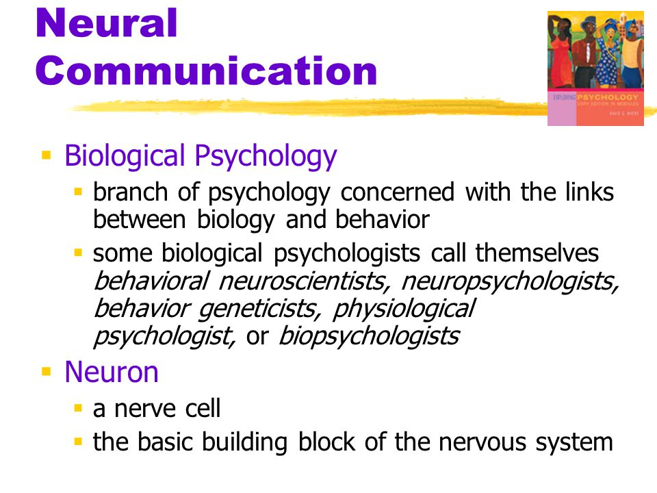 Neural Communication Biological Psychology Neuron