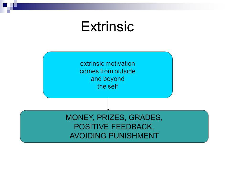 Extrinsic MONEY, PRIZES, GRADES, POSITIVE FEEDBACK,