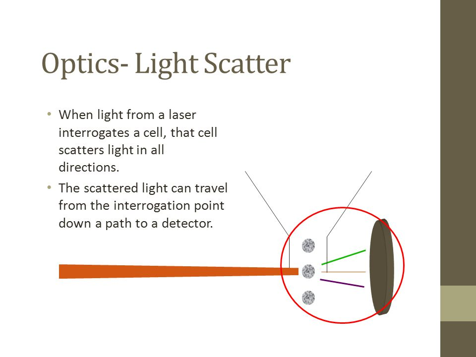 Optics- Light Scatter When light from a laser interrogates a cell, that cell scatters light in all directions.