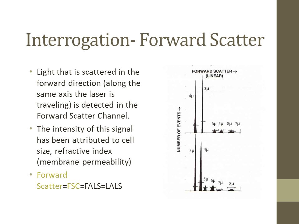 Interrogation- Forward Scatter