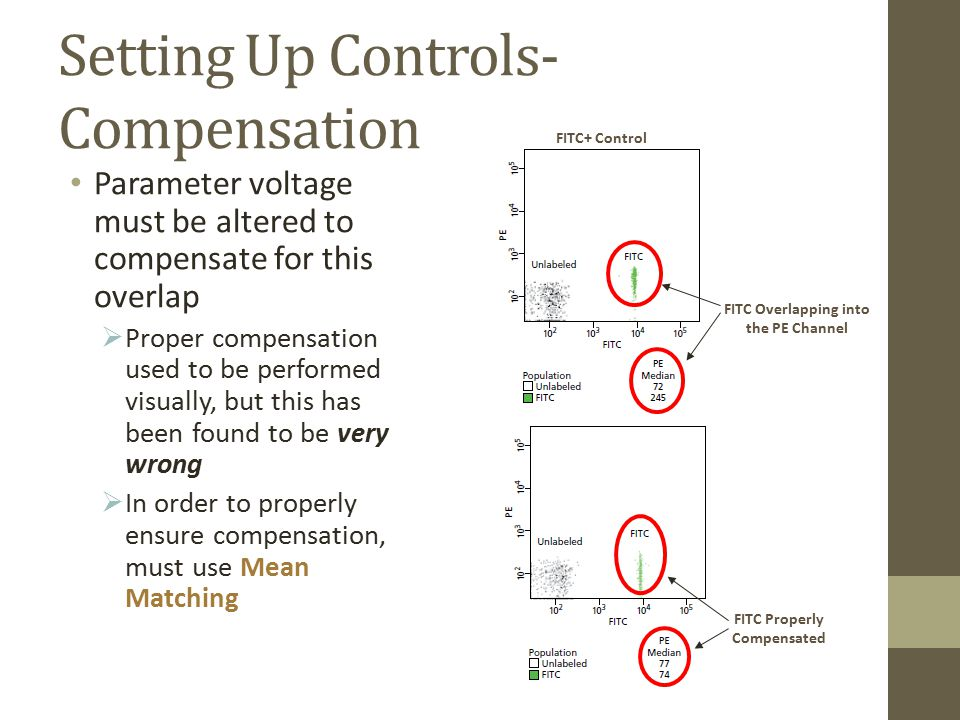 Setting Up Controls- Compensation