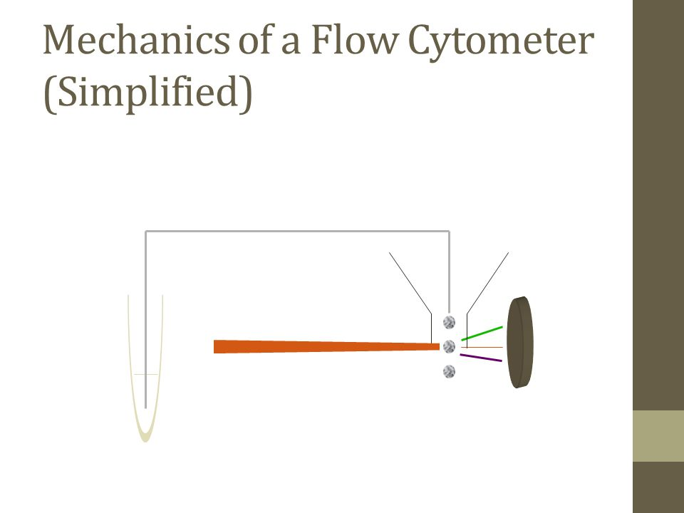 Mechanics of a Flow Cytometer (Simplified)