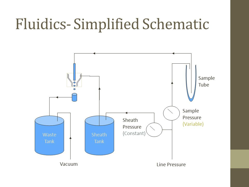 Fluidics- Simplified Schematic