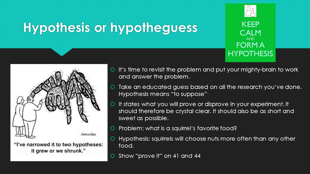 Hypothesis or hypotheguess