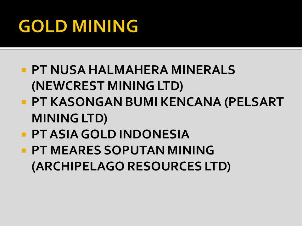 GOLD MINING PT NUSA HALMAHERA MINERALS (NEWCREST MINING LTD)