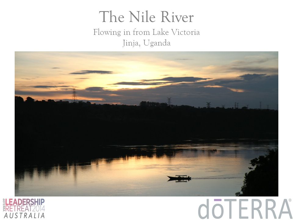 The Nile River Flowing in from Lake Victoria Jinja, Uganda