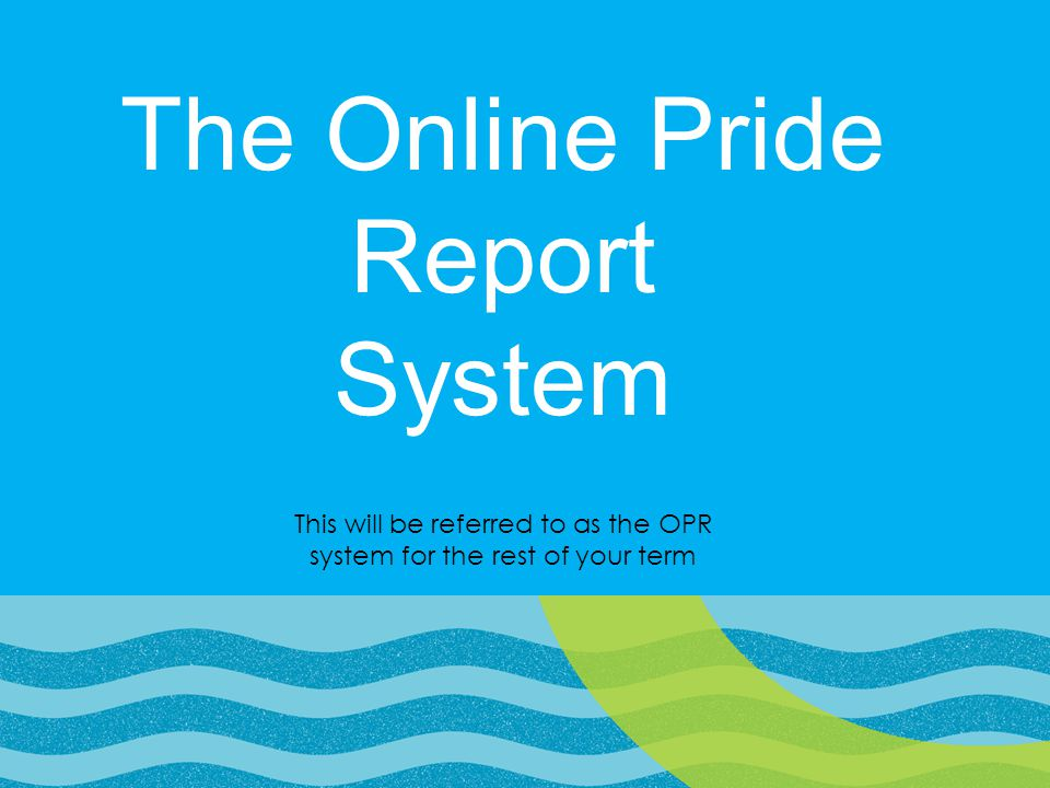 The Online Pride Report System