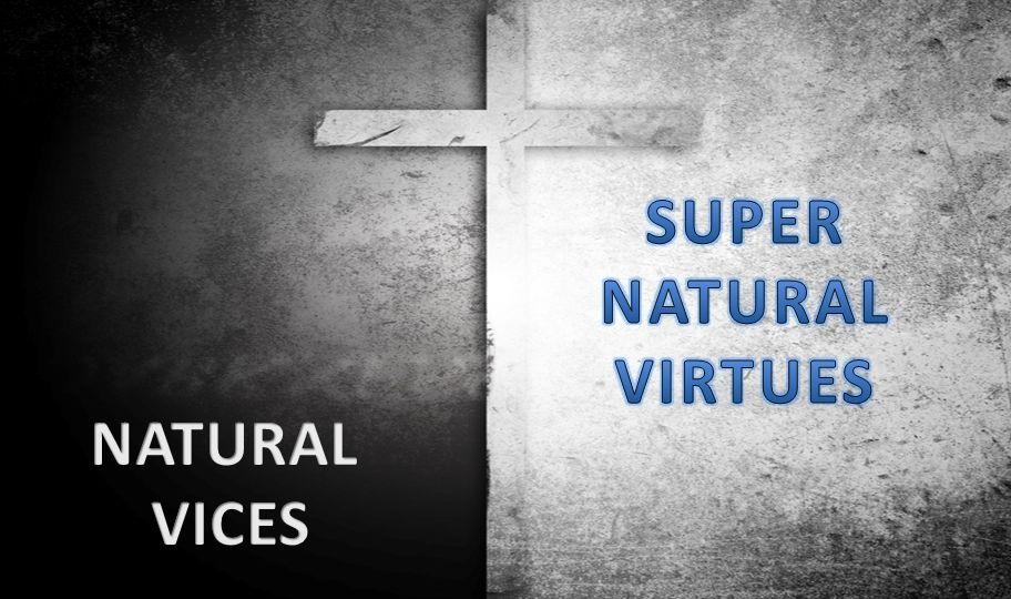 SUPER NATURAL VIRTUES NATURAL VICES