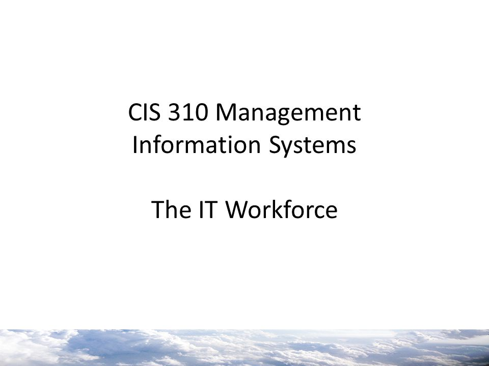 CIS 310 Management Information Systems The IT Workforce