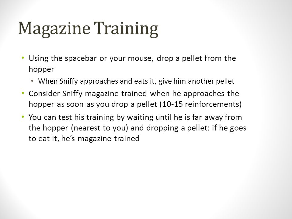 Magazine Training Using the spacebar or your mouse, drop a pellet from the hopper. When Sniffy approaches and eats it, give him another pellet.