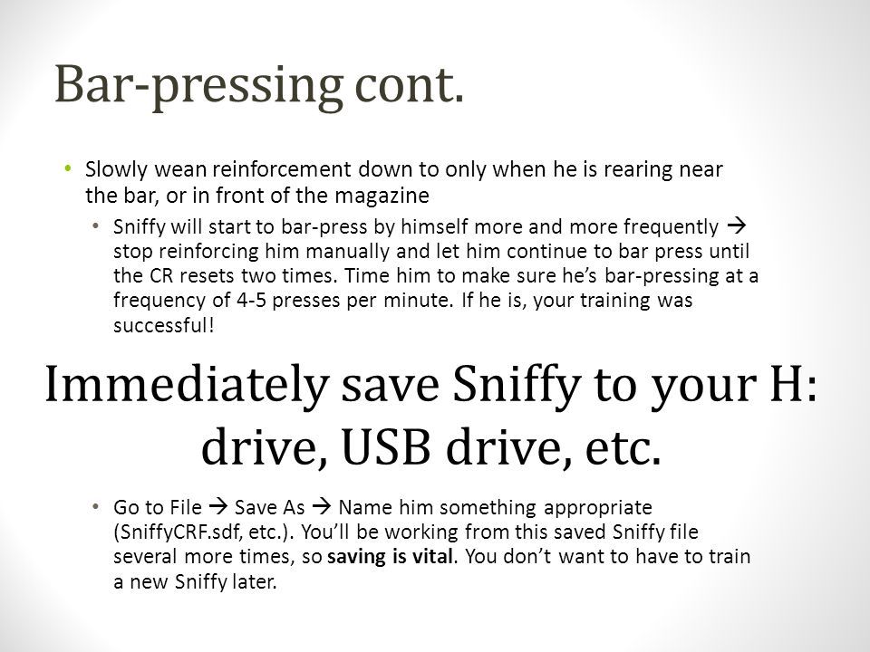 Immediately save Sniffy to your H: drive, USB drive, etc.