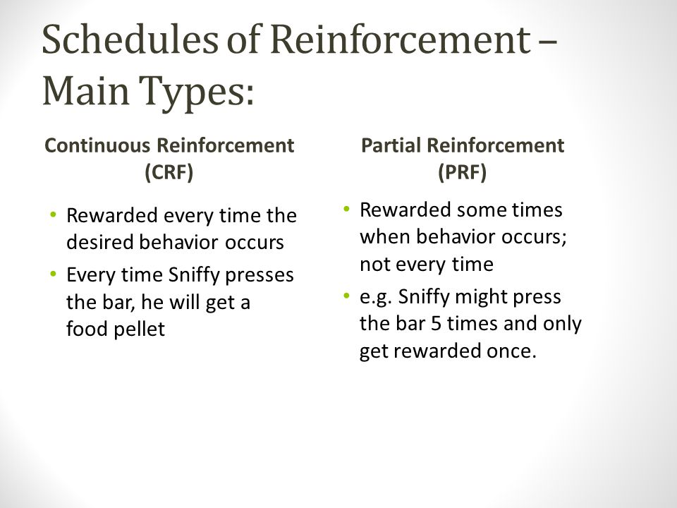 Schedules of Reinforcement – Main Types: