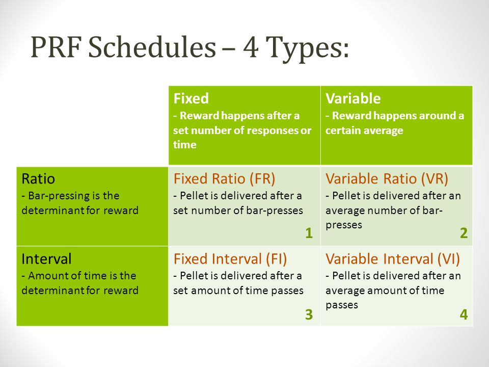 PRF Schedules – 4 Types: Fixed Variable Ratio Fixed Ratio (FR)