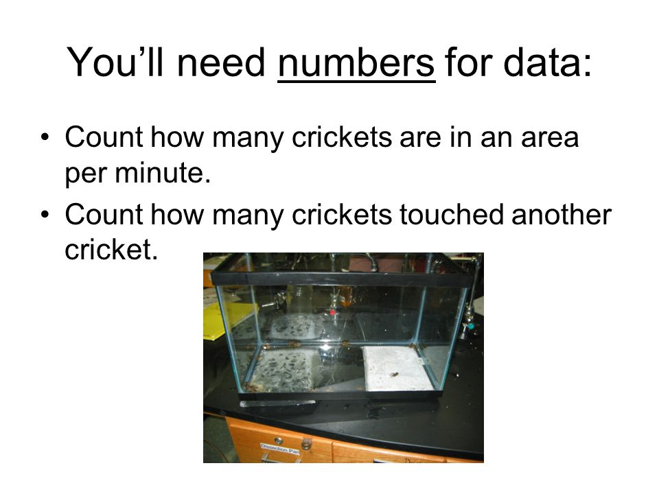 You'll need numbers for data: