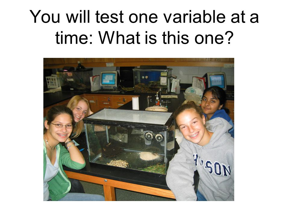 You will test one variable at a time: What is this one