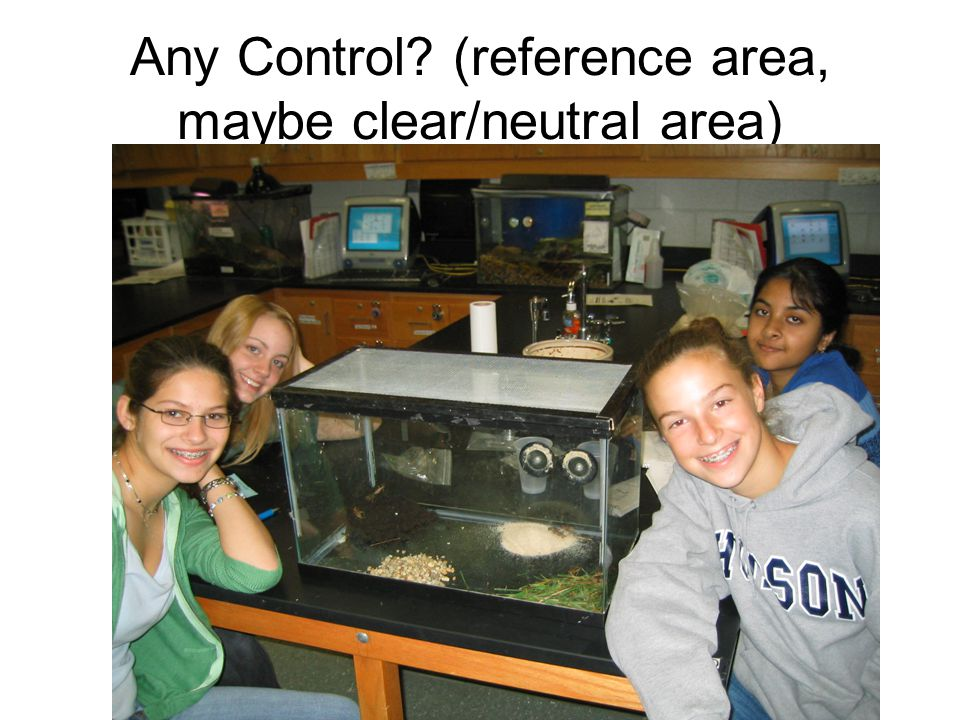 Any Control (reference area, maybe clear/neutral area)