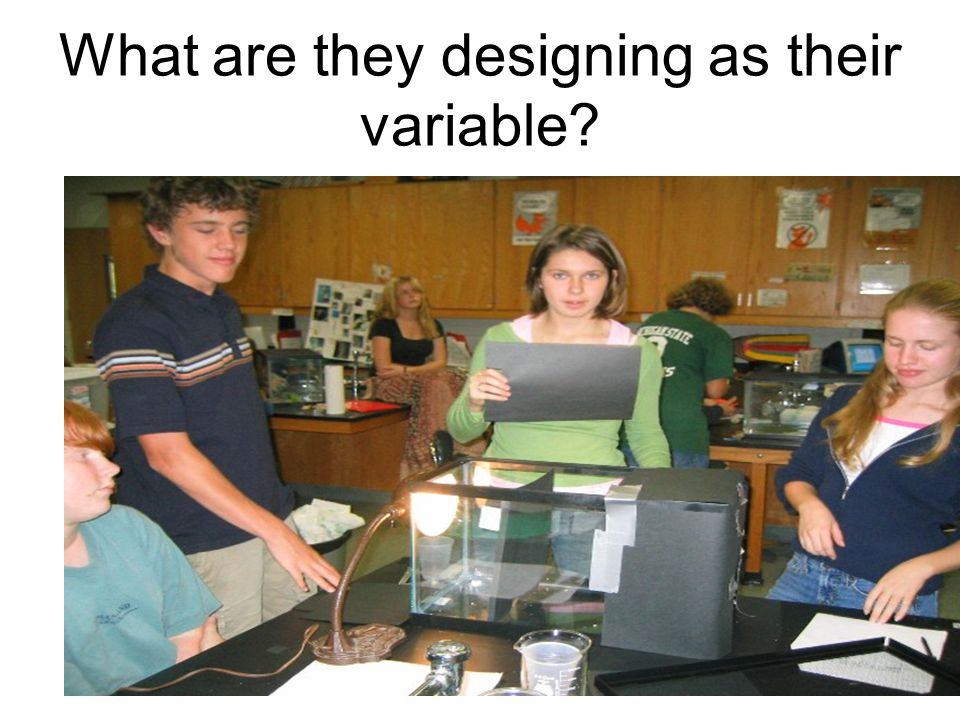 What are they designing as their variable