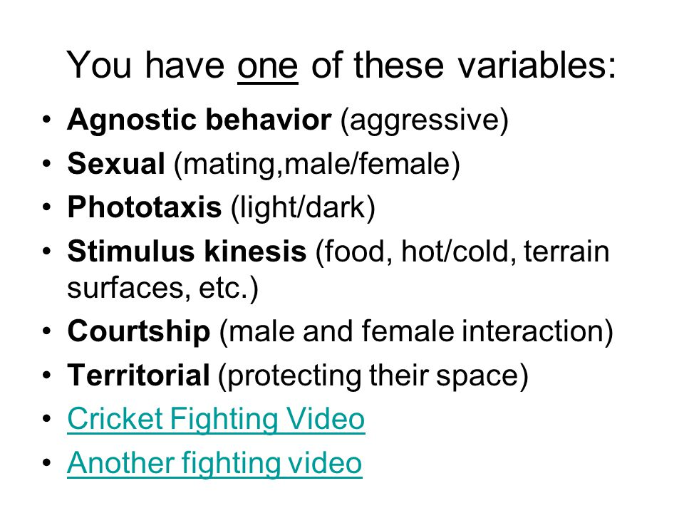 You have one of these variables: