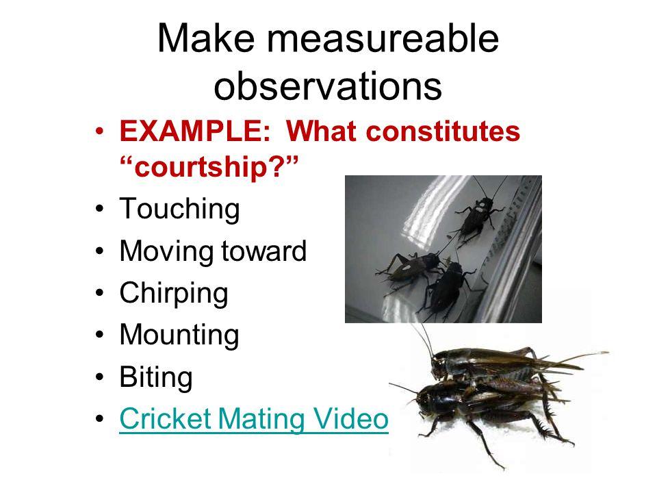 Make measureable observations