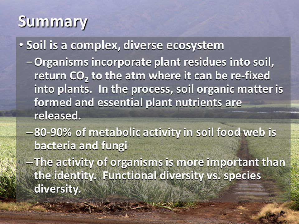 Summary Soil is a complex, diverse ecosystem