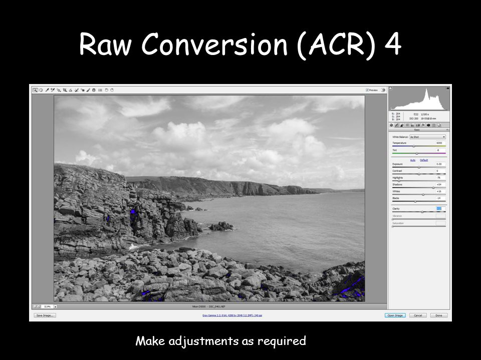 Raw Conversion (ACR) 4 Make adjustments as required