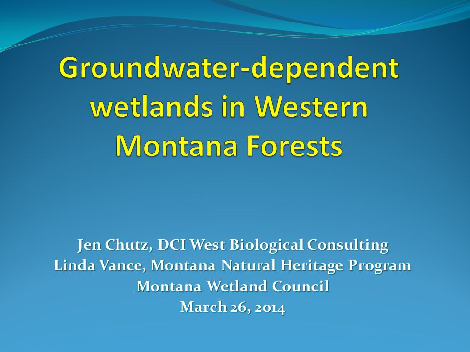 Groundwater-dependent wetlands in Western Montana Forests