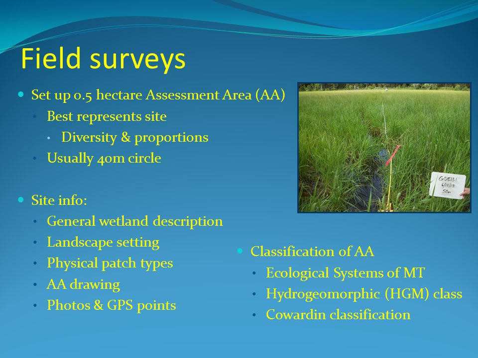 Field surveys Set up 0.5 hectare Assessment Area (AA)