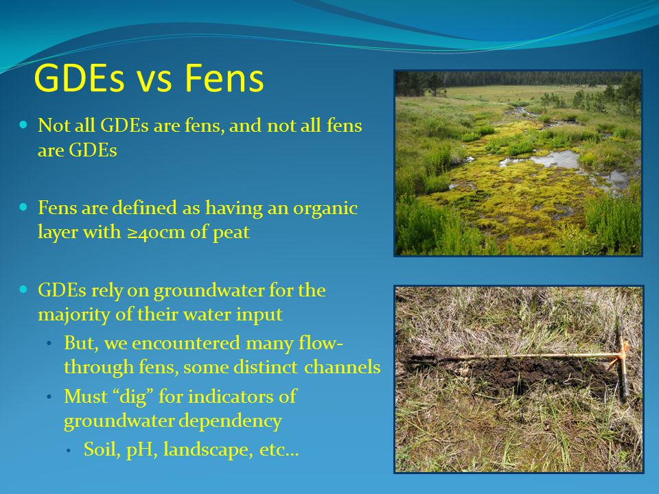 GDEs vs Fens Not all GDEs are fens, and not all fens are GDEs