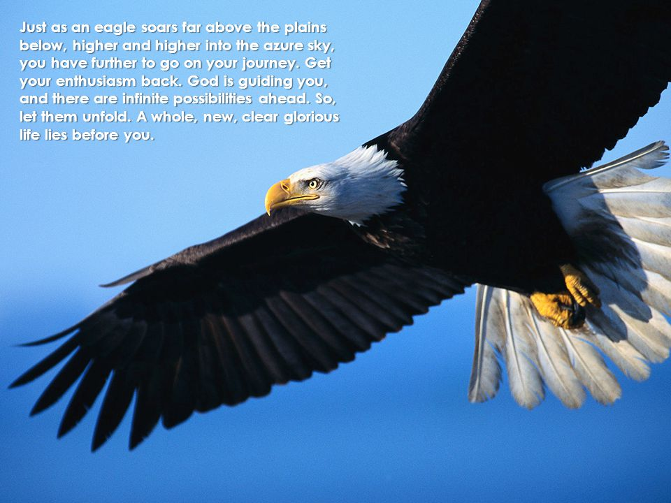 Just as an eagle soars far above the plains