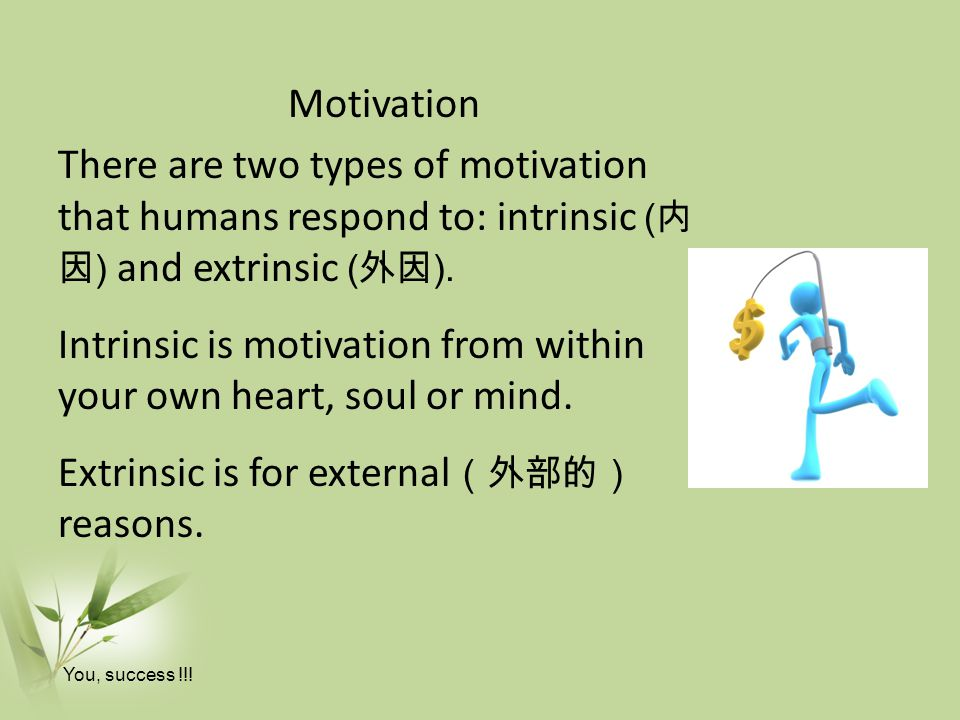 Motivation There are two types of motivation that humans respond to: intrinsic (内因) and extrinsic (外因). Intrinsic is motivation from within your own heart, soul or mind. Extrinsic is for external(外部的) reasons.