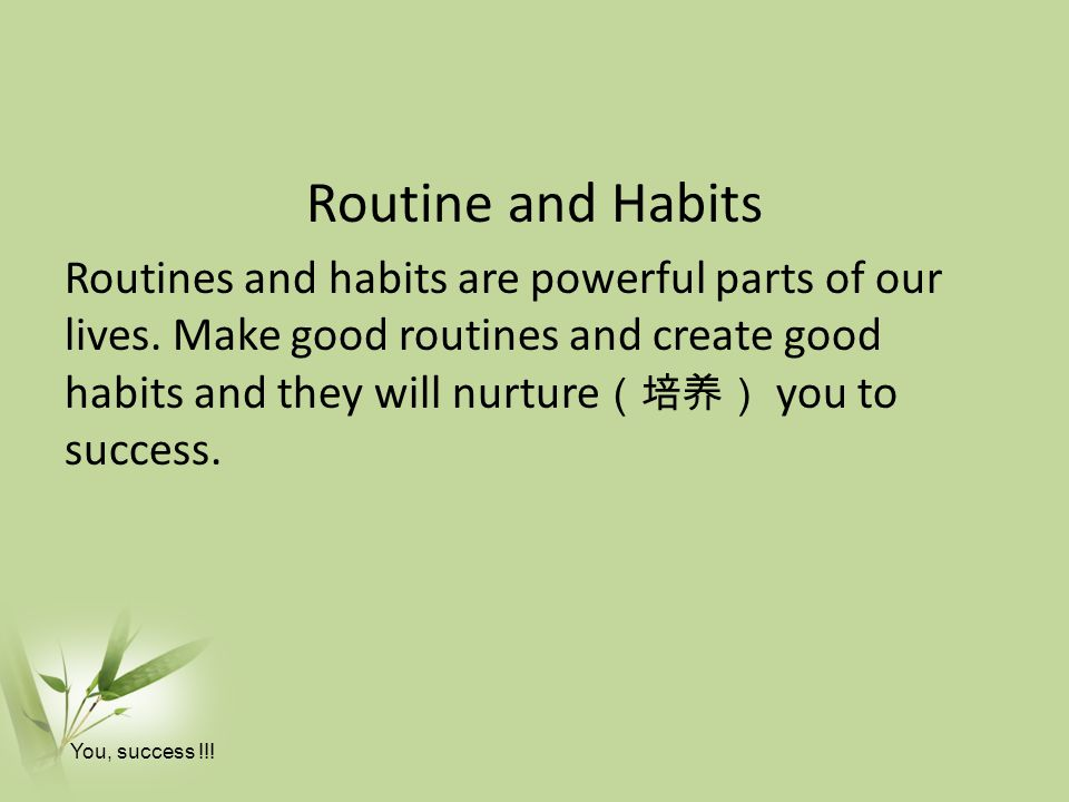 Routine and Habits