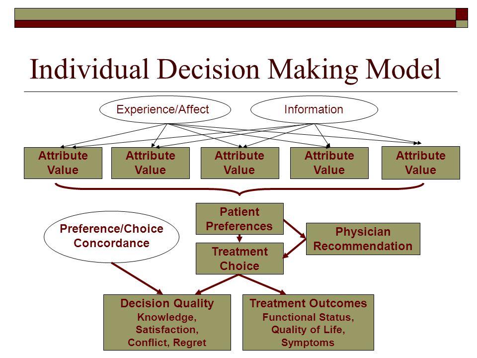 Individual Decision Making Model
