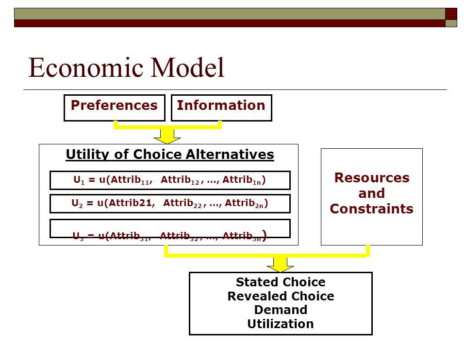 Economic Model Preferences Information Utility of Choice Alternatives