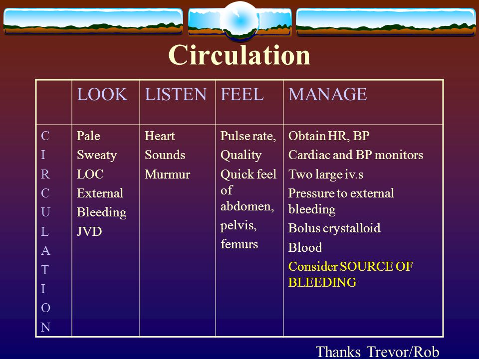 Circulation LOOK LISTEN FEEL MANAGE Thanks Trevor/Rob C I R U L A T O