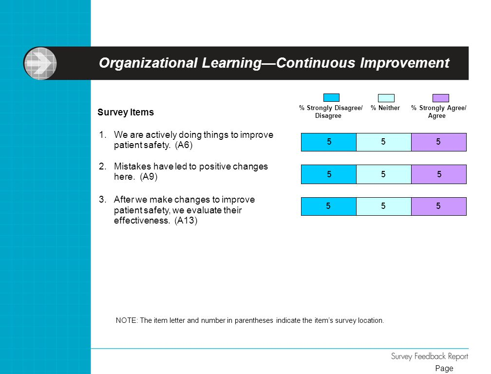 Organizational Learning—Continuous Improvement