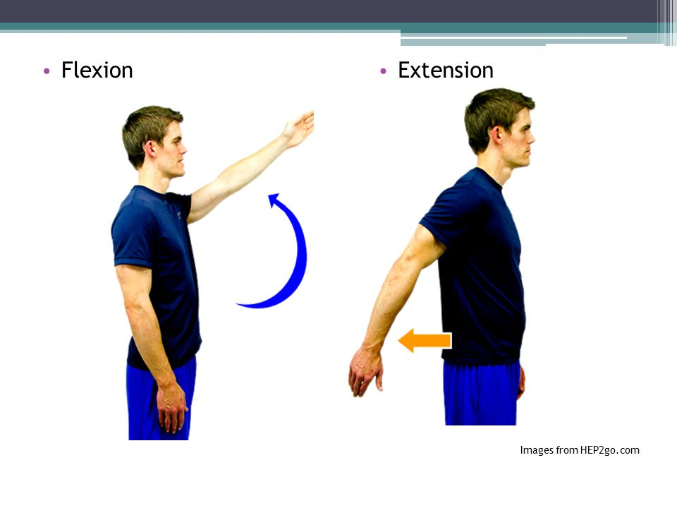 Flexion Extension Images from HEP2go.com