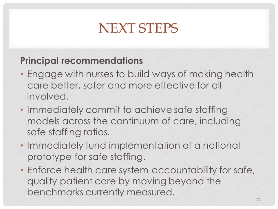 Next steps Principal recommendations