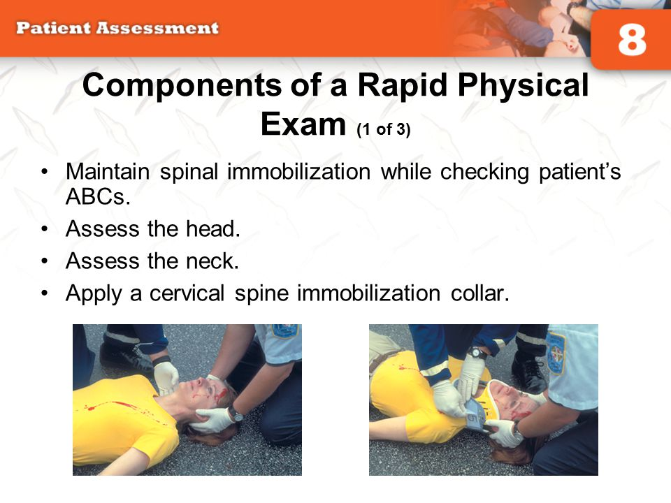 Components of a Rapid Physical Exam (1 of 3)