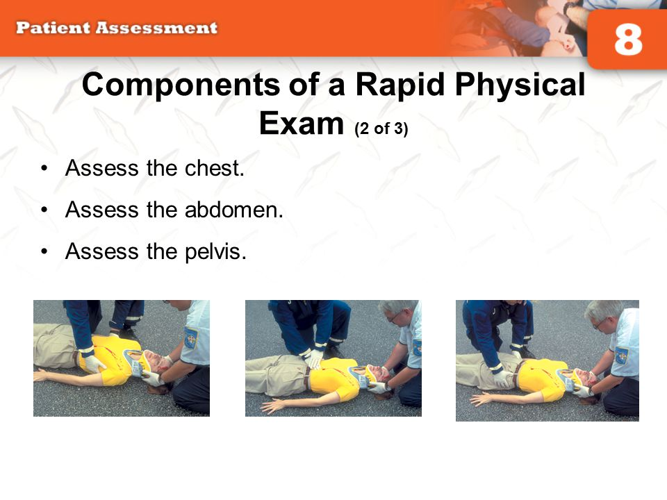 Components of a Rapid Physical Exam (2 of 3)