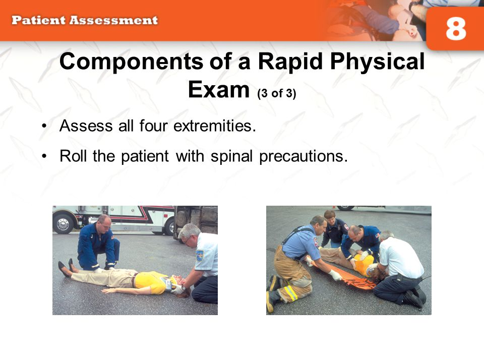 Components of a Rapid Physical Exam (3 of 3)